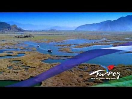 ocean yachting travel agency blu