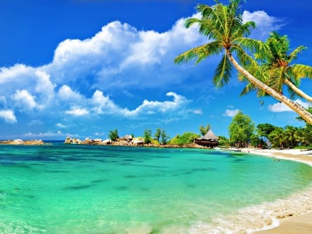 how to find cheap caribbean crui