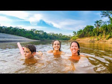 amazon jungle tours with rainfor